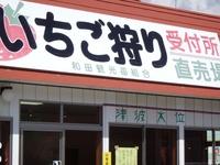 120325ichigo_9.jpg